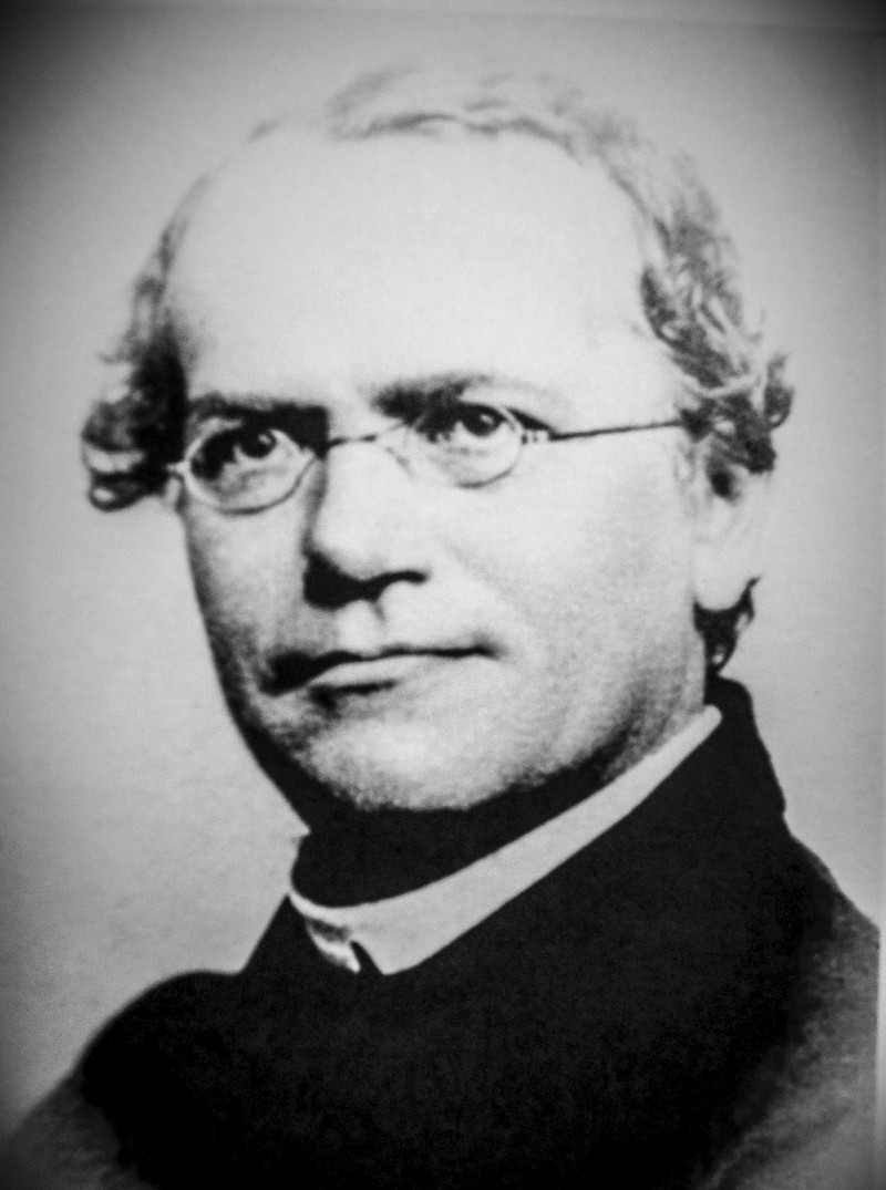 the life of gregor mendel Gregor johann mendel was born on july 20th, 1822 in the austrian empire, now  the  and completed a series of experiments at his monastery later in life.