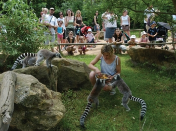 Plzeň ZOO – Totally Another World