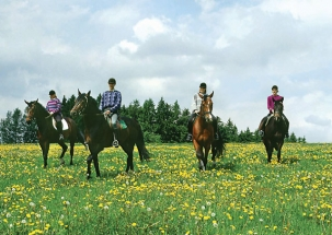 Horse Ride Holiday – Summer in the Saddle